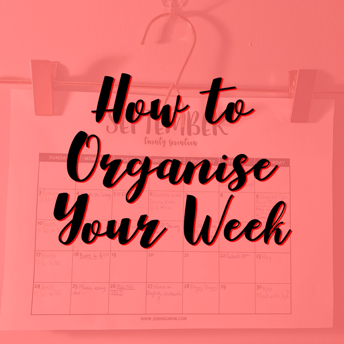 How to Organise your Week